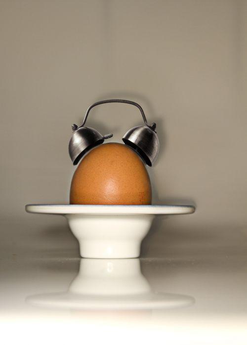 egg alarm clock arouse