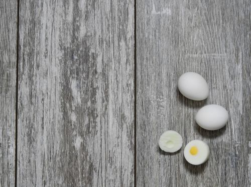 egg eat food