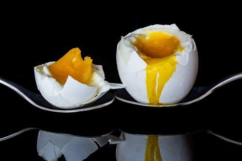 egg bisected egg boiled egg