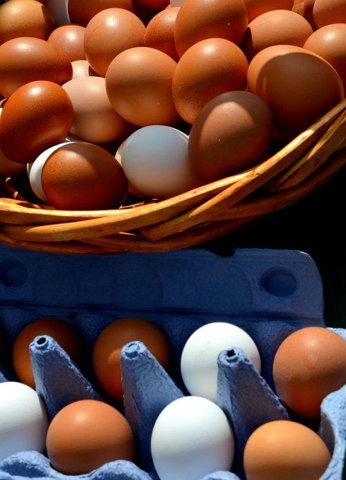 egg hen's egg egg box