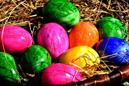 egg colored colorful
