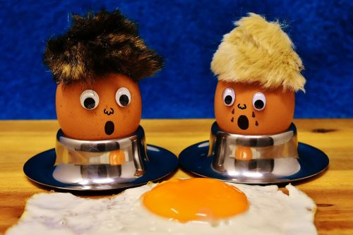 egg fried mourning