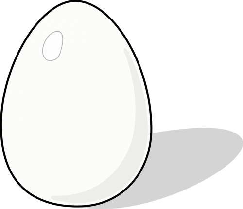 egg poultry protein