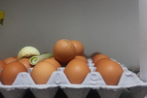 egg food easter