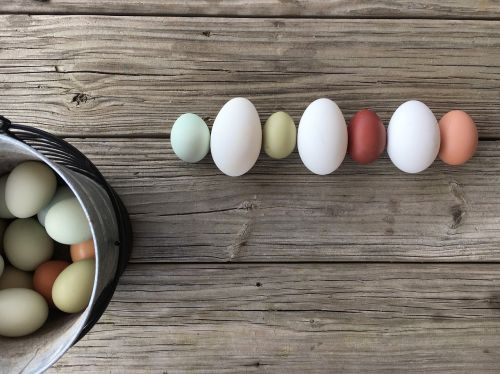 egg easter wooden
