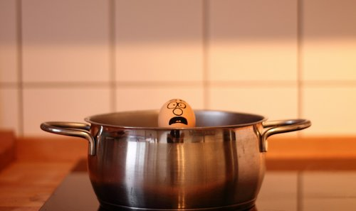 egg  cook  help