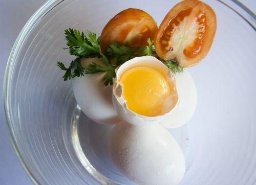 egg egg yolk yellow