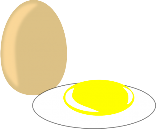 kiaušinis,maistas,kūrybinis kiaušinis,mityba,pusryčiai,nemokama vektorinė grafika