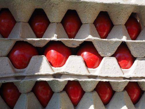 egg easter eggs red