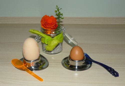egg breakfast egg egg cups