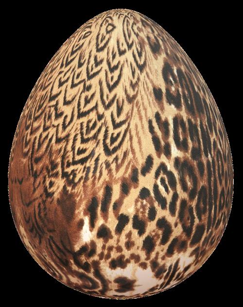 kiaušinis,Velykos,Scrapbooking,Velykinis kiaušinis,medžiaga,puošimas,gyvūnas,tekstūra