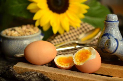 egg yolk boiled egg