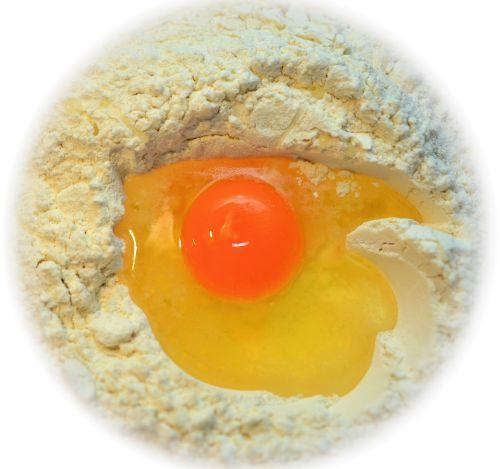 egg yolk flour