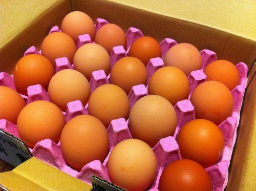 egg carton box of eggs egg box