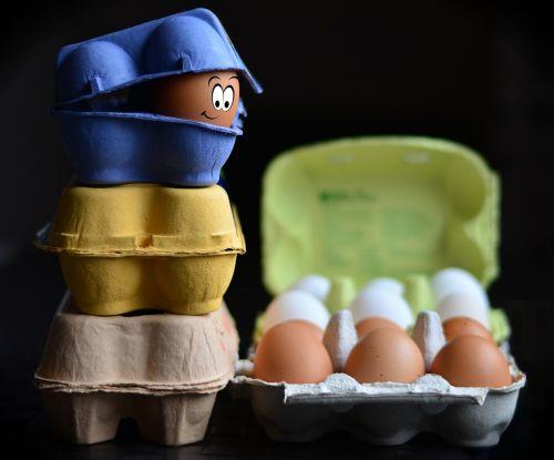 egg cartons egg egg box