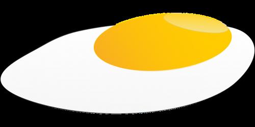 egg yolk fried egg egg