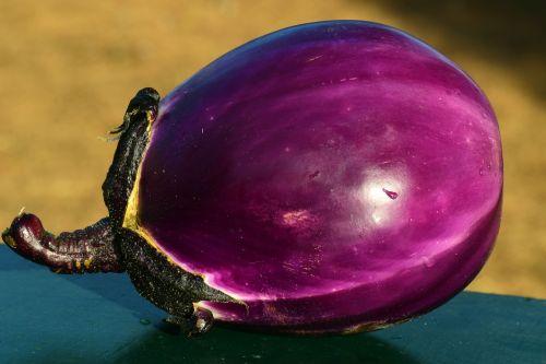 eggplant food eat