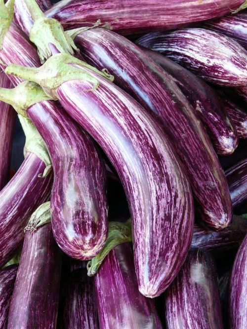 eggplant mark purple