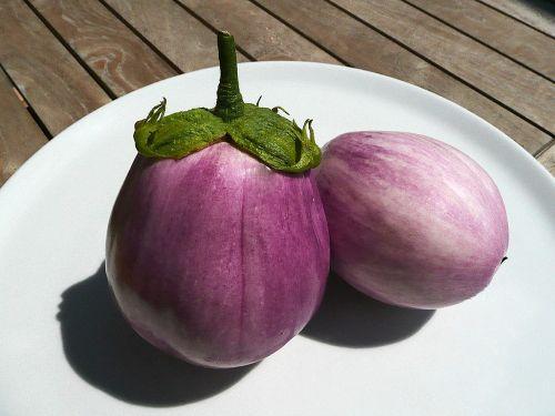 eggplant melanzana cook