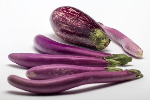 eggplant fruit still life