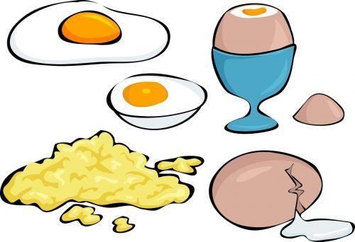 eggs variety boiled egg