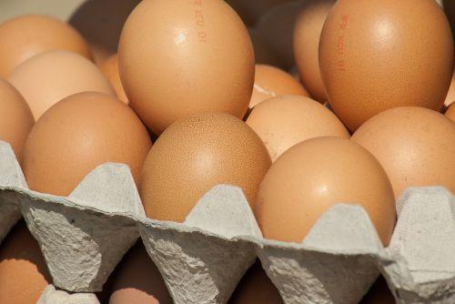eggs market hens