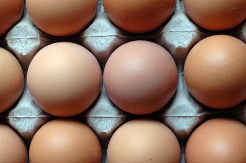 eggs pattern food