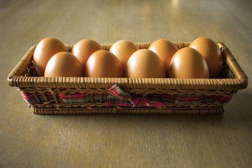 eggs hen food
