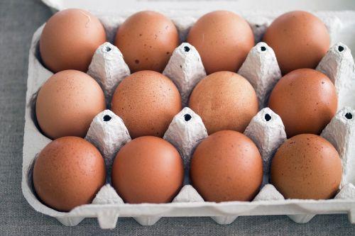 eggs rural life hens