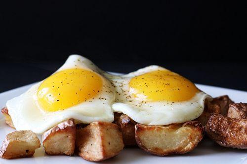 eggs fried eggs fried