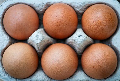 eggs  six  box