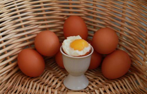 eggs egg basket