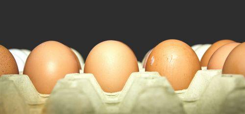 eggs carton dozen