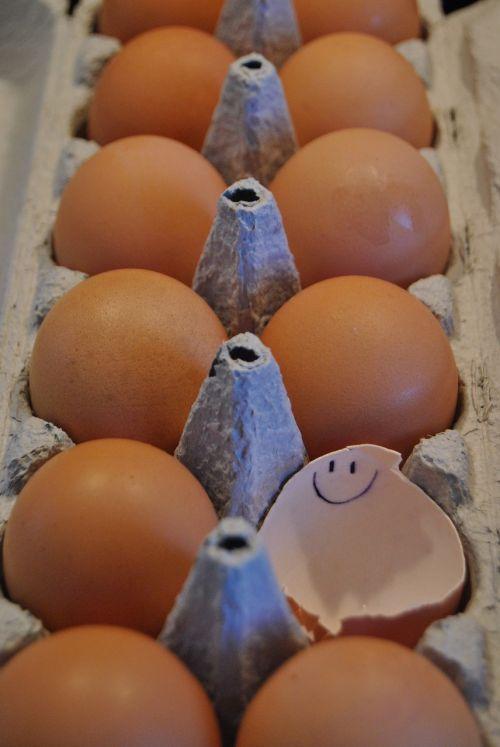 eggshell smile cheerful