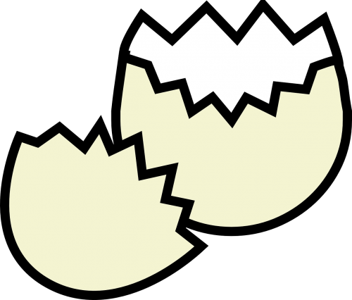 eggshell cracked broke