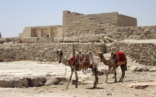 egypt cairo eastern pyramid
