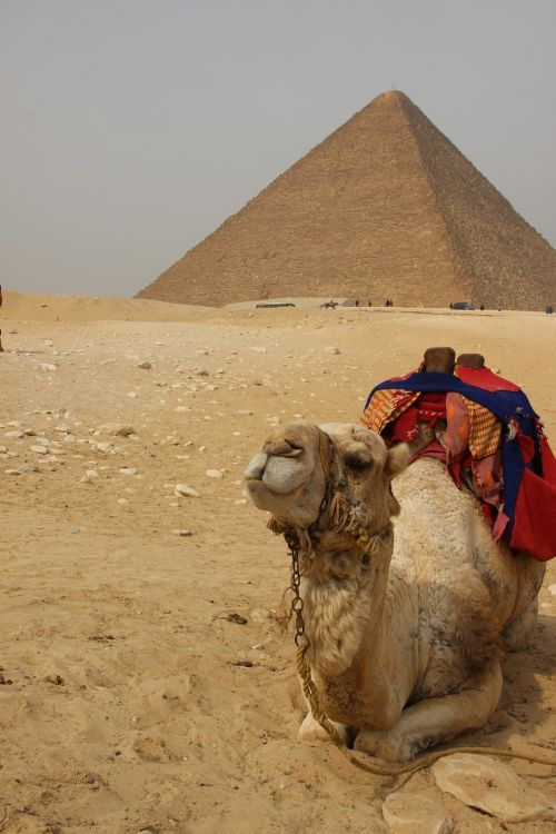 egypt africa pyramid