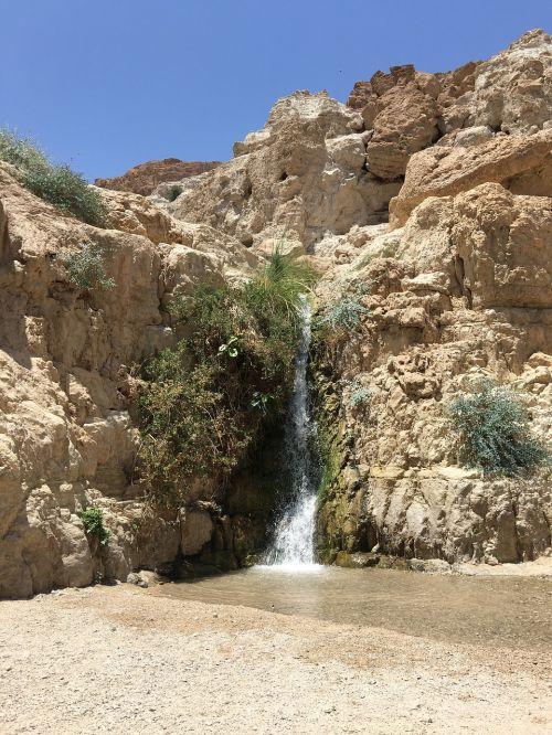 eingeti israel desert