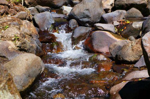 el salvador the impossible river