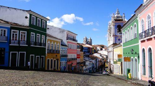 el salvador brazil brazilwood