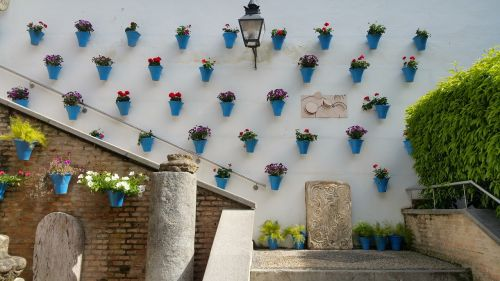 el zoco courtyard flowers