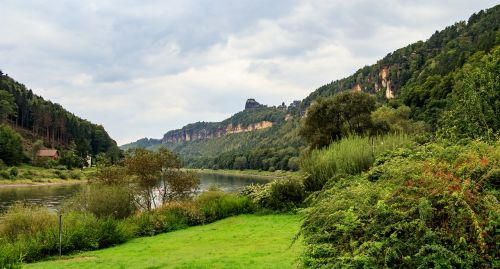 elbe elbe valley nature