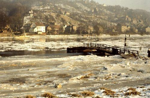 Elbe,dreifuojantis ledas,ledas,žiema,upė,sušaldyta,ledas,plekšnė