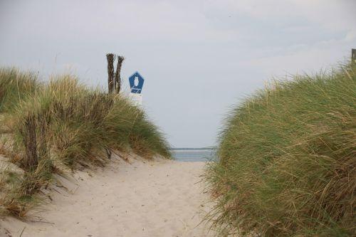 elbow nature dunes