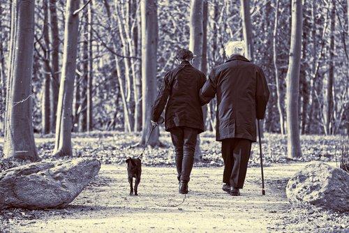 elderly couple  couple  woman