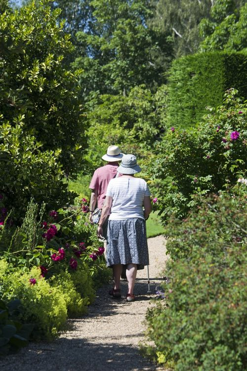elderly couple garden path walking