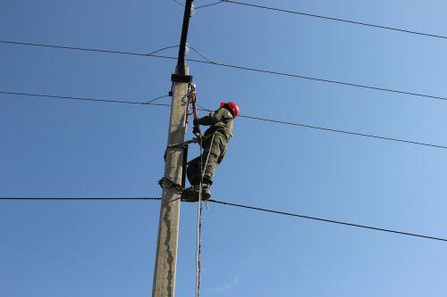 electrician check employee