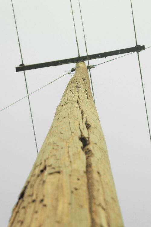 electricity cables wooden poles