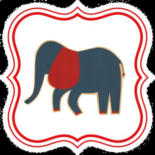 elephant kids animal