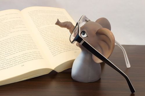elephant glasses book